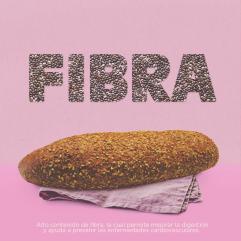 MOMI_PROPUESTA 3_FIBRA
