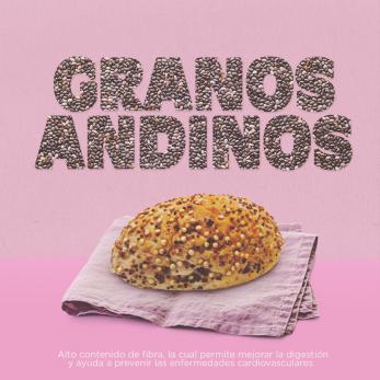 MOMI_PROPUESTA 3_GRANOS ADINOS